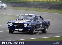 shelby mustang stock photos u0026 shelby mustang stock images alamy