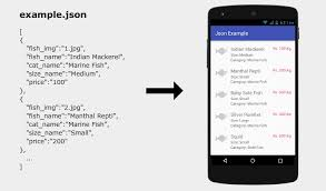 android json android json parsing and display with recyclerview