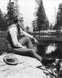 in the company of plants and rocks re reading john muir