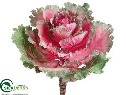 artificial ornamental cabbage faux ornamental cabbage cabbage