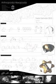seminar design build charrette 2015 by seanpt architecture