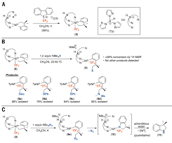 design synthesis and carbon heteroatom coupling reactions of