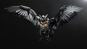 imagenes 4k download strix owl image 4k wallpaper