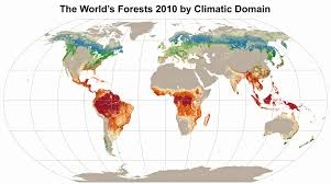 World Map Biomes by Food Forest Resources