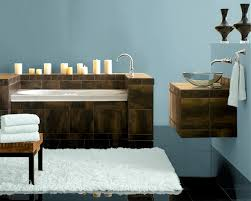 sherwin williams tranquil aqua for the bathroom my bathroom does