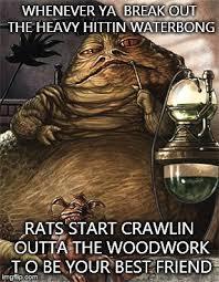 Jabba The Hutt Meme - star wars jabba the hut meme generator imgflip