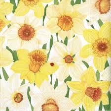 amazon com entertaining with caspari daffodil hill paper