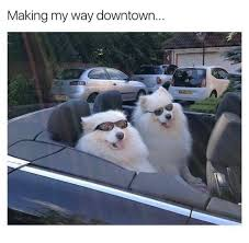 Making My Way Downtown Meme - making my way downtown downtown meme on astrologymemes com