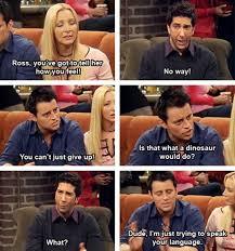 Friends Tv Show Memes - friends tv show quotes buscar con google funnies pinterest