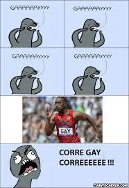 Seal Meme Gay - gay seal meme generator 28 images gaaaay gay seal meme generator