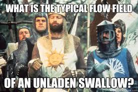 Monty Python Meme - monty python witch meme lekton info