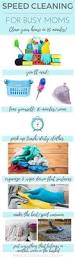 Housekeeping Tips by 1684 Best Cleaning Tips Images On Pinterest Cleaning Hacks
