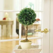 Artificial Topiaries - artificial topiaries add an artificial topiary for beauty