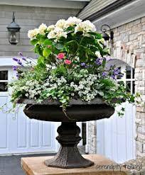 best 25 urn planters ideas on pinterest hanging basket garden