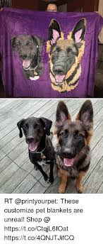 Customize Meme - rt these customize pet blankets are unreal shop httpstcoctqjl6foat