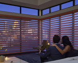 Hunter Douglas Blinds Dealers 40 Best Hunter Douglas Vignette Modern Roman Shades Images On