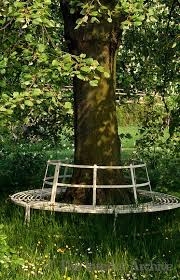 34 best tree benches images on pinterest tree bench tree seat