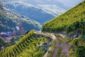chambre d hote alsace route des vins chambre d hotes alsace route des vins evtod