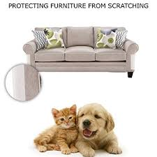 sofa that cats won t scratch amazon com cat scratch protection any couch sofa or chair works