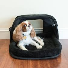 Sleepypod Mobile Pet Bed Carry On In Style Pet Age