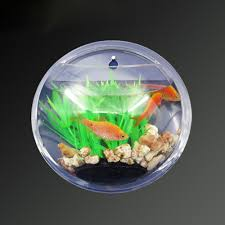 fish tank new home decoration pot wall hanging mount bubble