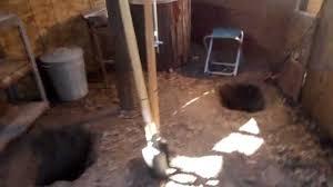 Build A Backyard Fort My Backyard Fort Tunnel Youtube