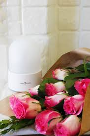 aromatherapy everywhere you go dana claudat the inspired home