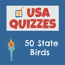 Facts About Georgia State Flag Usa Facts For Kids Learn About The United States