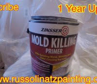 lowes concrobium mold killing primer and mildew stains on shower