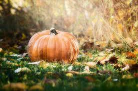 naacp asks utah man to remove hangman halloween decoration