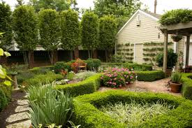 ideas wonderful beautiful backyards design with small plants for