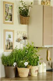 decorate kitchen with herb garden tips and diy ideas home