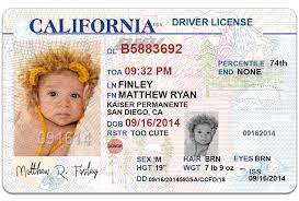 driver license template 28 images drivers license template
