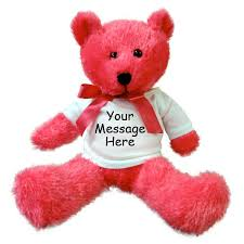 Engraved Teddy Bears Personalized Teddy Bear Neon Pink Bear By Burton Plush U2013 Mandys
