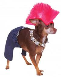 costumes best costumes for dogs