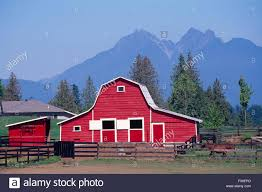 red barn on farm near fort langley fraser valley british