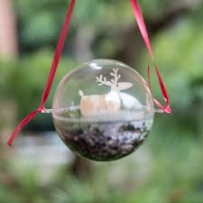 make a mini terrarium holiday ornament my chicago botanic garden