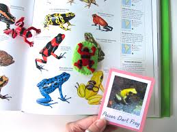 Dart Map Animals Of South America For The Montessori Wall Map U0026 Quietbook