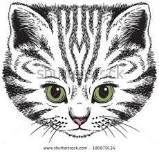 cute cat vector download free vector art stock graphics u0026 images