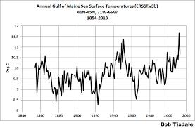 Cape Cod Water Temp - baseless alarmism global warming u0027s impact on gulf of maine