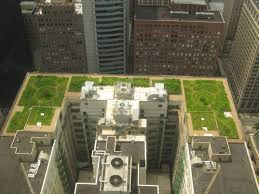 House Designer Plans Chicago City Hall Wikipedia A Roof Garden Graces The Top Of Idolza