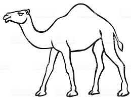 camel contour icon stock vector art 638049234 istock