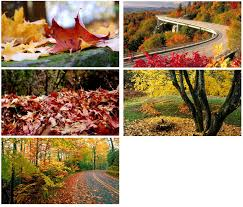 lenovo laptop themes for windows 7 download autumn themes for windows download pureinfotech