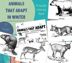 coloring pages of animals that migrate montessori friendly ways to teach kids about animals in winter