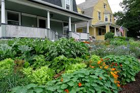 Edible Garden Ideas Less Noise More Green Edible Landscape Project