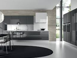 Charcoal Grey Kitchen Cabinets Brilliant Modern Gray Kitchen Cabinets E In Decorating