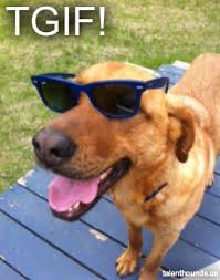 Weekend Dog Meme - tgif the weekend is here after a long crazy week i am happy to