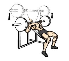 Barbell Bench Press Technique Upper Body Workout Plan With Easy To Understand Images U0026 Videos
