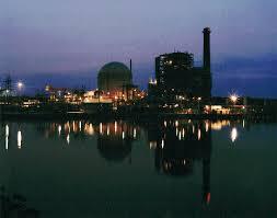 Carolina Power And Light H B Robinson Nuclear Power Plant South Carolina