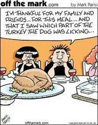 34 best thanksgiving images on diy humor and